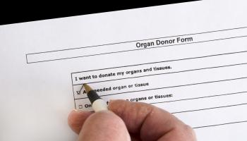 hand with pen ticking 'I want to donate organs' on a donor form