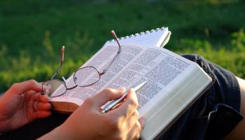 person reading bible outside on grass with pen in hand